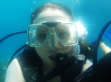 Great Barrier Reef - Scuba diving