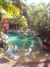 Ferntree Resort