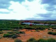 Yardie  Creek und Termiten Nest